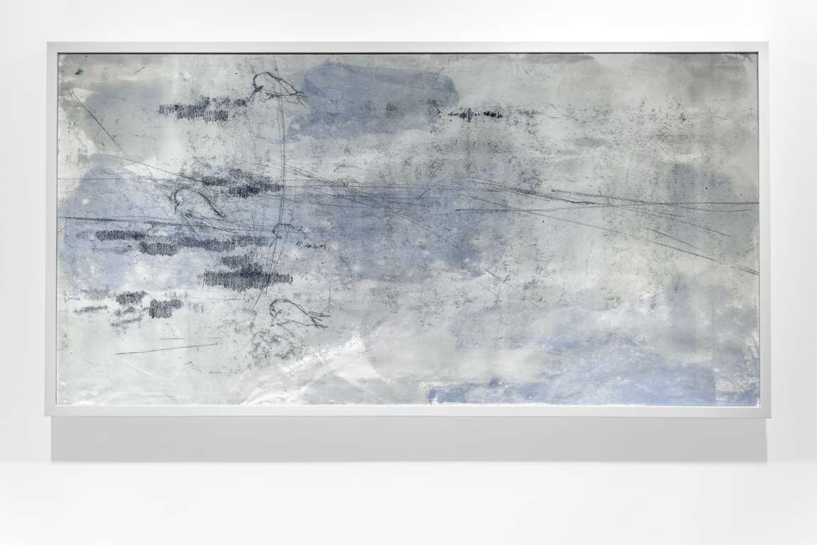 Installation view by Laura Bisotti, Prove di volo, 80 x 135 cm, Monotype on japanese paper, 2012