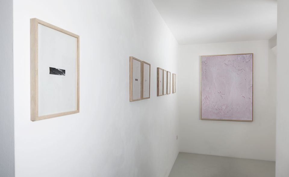Installation view of Silva Imaginum, curated by Federico Ferrari, 11th May - 10th July 2015