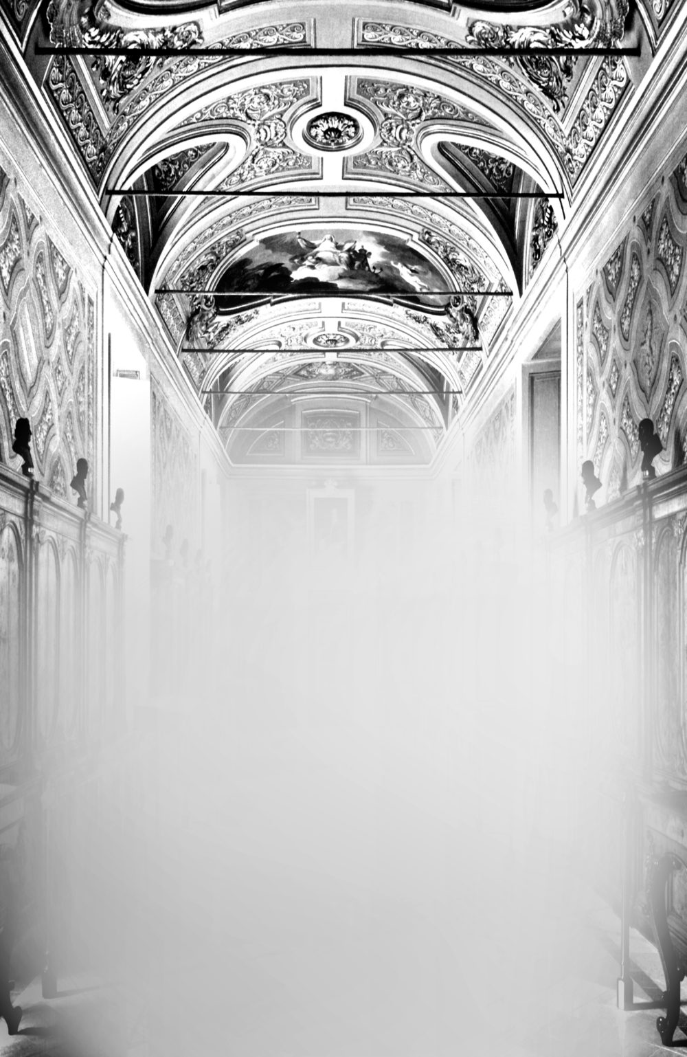 Mariella Bettineschi, L'Era Successiva (Biblioteca Apostolica Vaticana, Roma), 2015, direct print on plexiglass, 156 x 100 cm